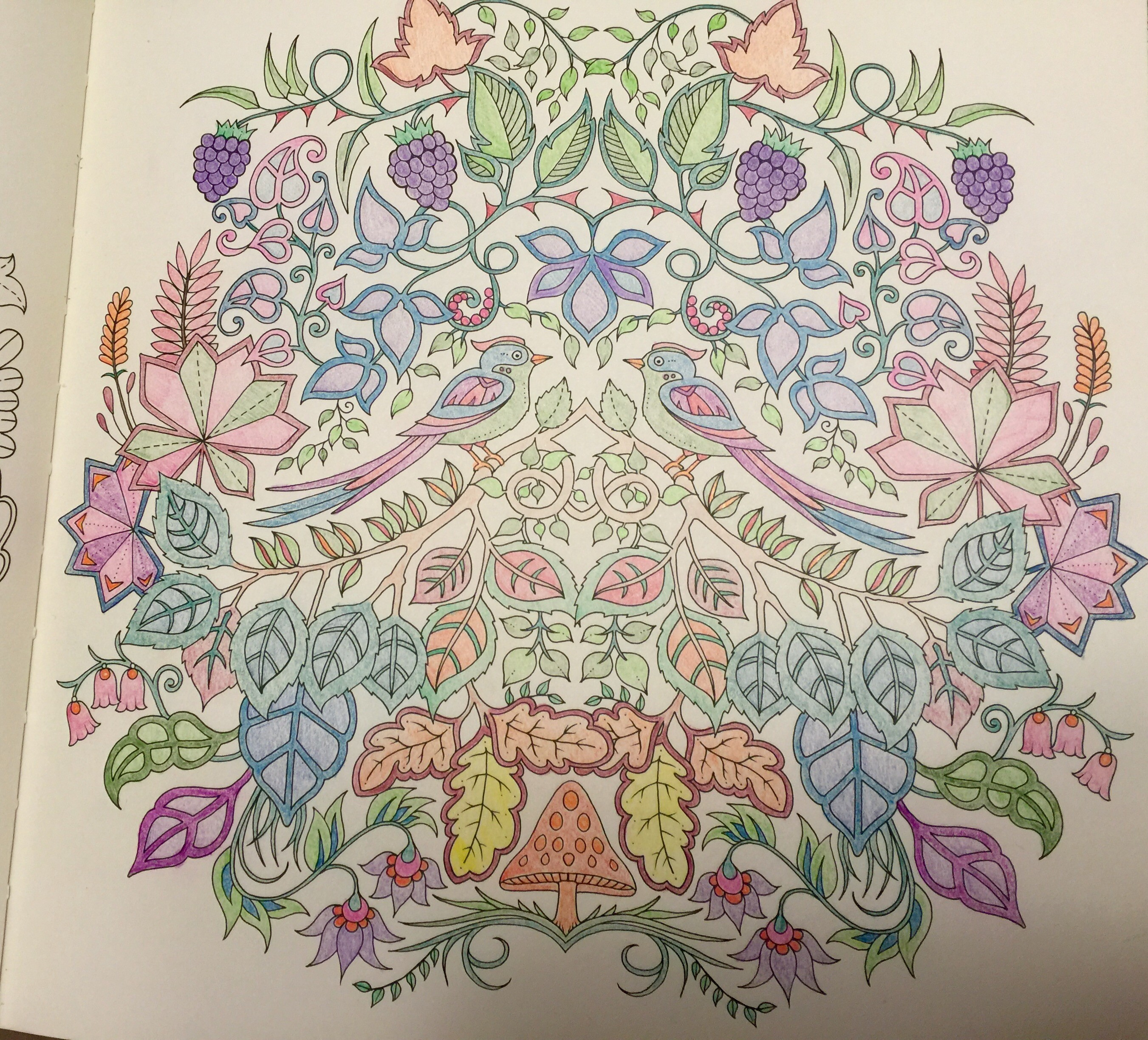 Clean Coloring Book Tips And Tricks Hand Drawn Dragon Tattoo Style