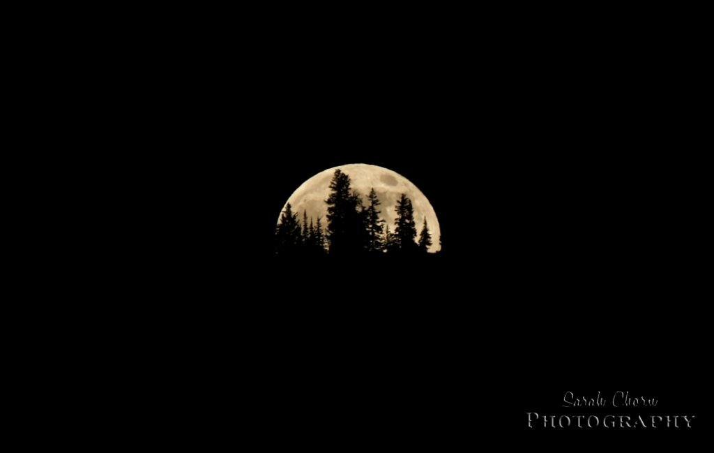 minimalist moonriselogo